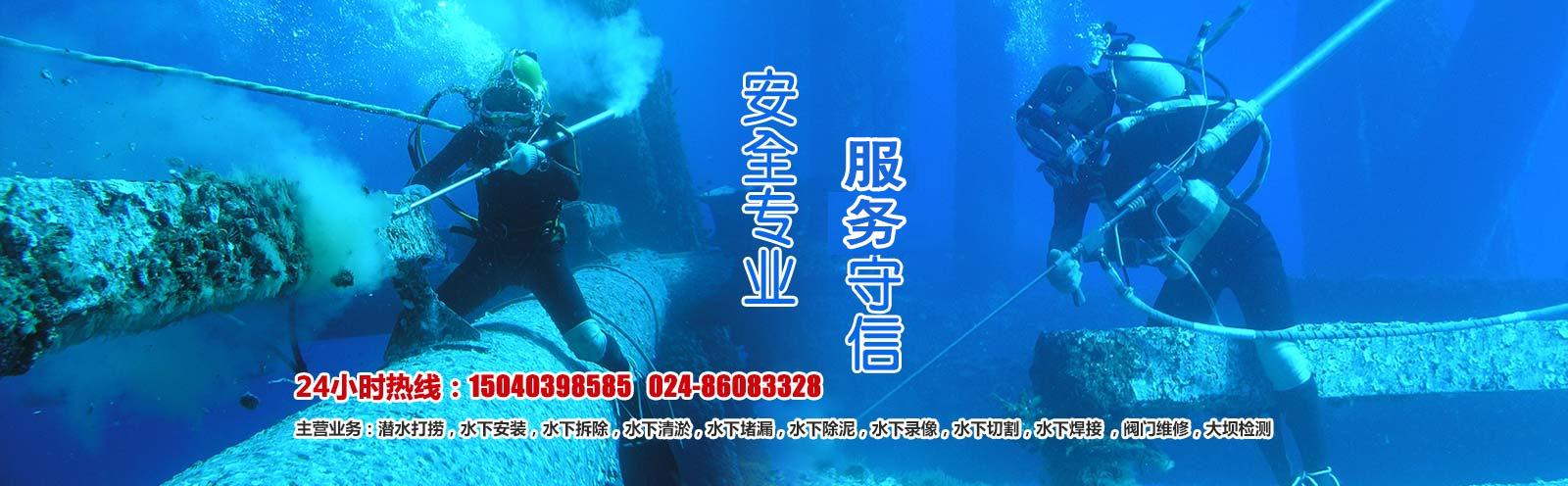 url(http://www.sylongyi.com.cn/upfile/ads/20160907161738-15473779337480664.jpg)